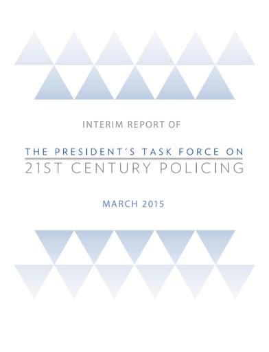Task Force Interim Report